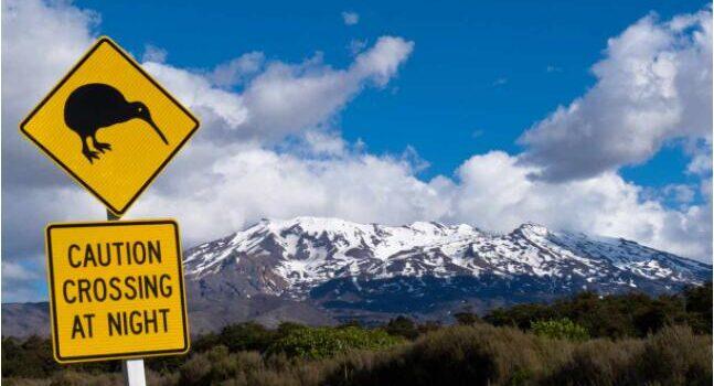 Scenic New Zealand